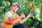 ing-ambiental_web-banner